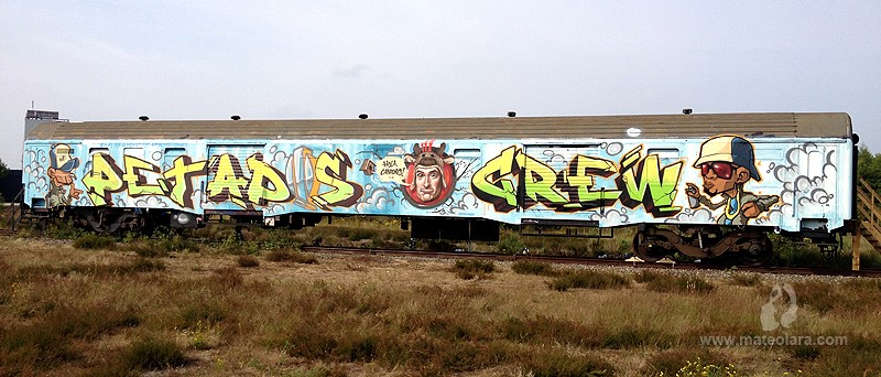 tren-petados-train-graffiti